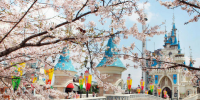 Korea Seoul Lotte World Theme Park Castle View 800×400