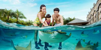 Singapore Adventure Cove Waterpark 1 Daypass Ray Bay 800x400