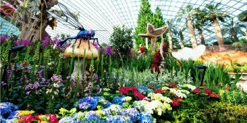 Garden By The Bay Bus gardensthe bay tickets booking & travel information | triba east