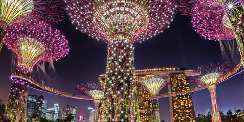 Garden By The Bay Flower Dome gardensthe bay tickets booking & travel information | triba east