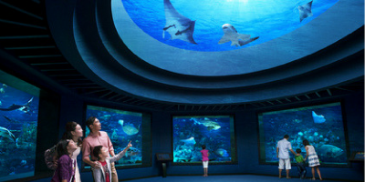 Singapore S.E.A Aquarium Ocean Dome 800x400