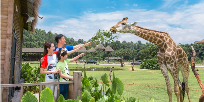 China Guangzhou Chimelong Safari Park Family Fun 800×400