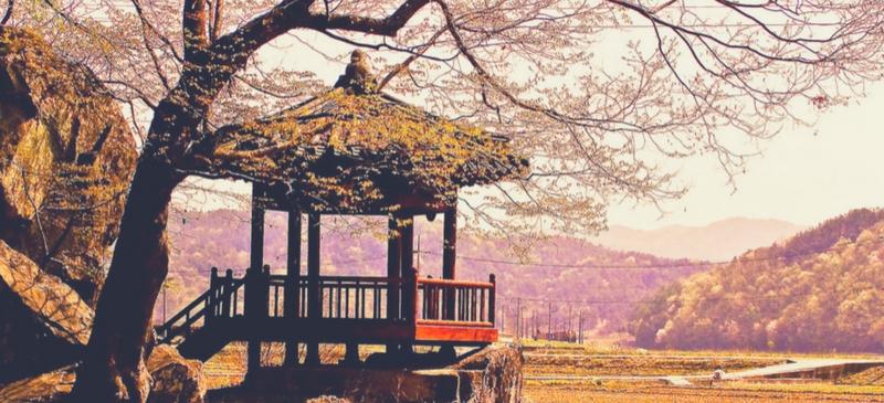 Korea Top Activities
