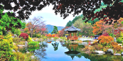 Korea Garden of The Morning Calm 800x400