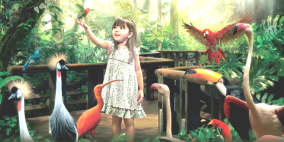Singapore Jurong Bird Park Kids Fun 800x400