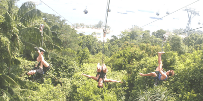 Singapore Mega Adventure Megazip Buddies Travel 800x400