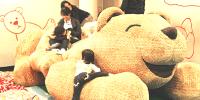 Korea Jeju Teddy Bear Teseum Playzone 800×400
