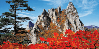 Korea Mt Sorak Autumn Beauty 800x400