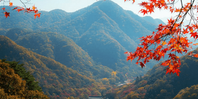 Korea Naejangsan in Autumn Season 800x400