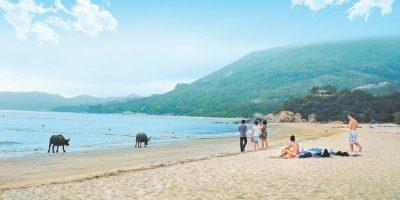 Ngong Ping Tai O Beach