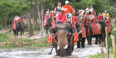Thailand Hua Hin Elephant Riding & Show 800x400