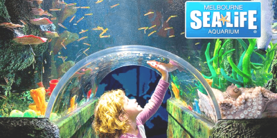 Australia Melbourne Sea Life Aquarium 800x400
