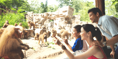 Singapore Zoo Family Fun 800x400