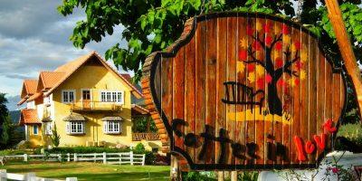 Thailand Chiangrai Coffee of Love 1
