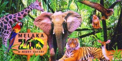 Malaysia Melaka Zoo & Night Safari 800x400