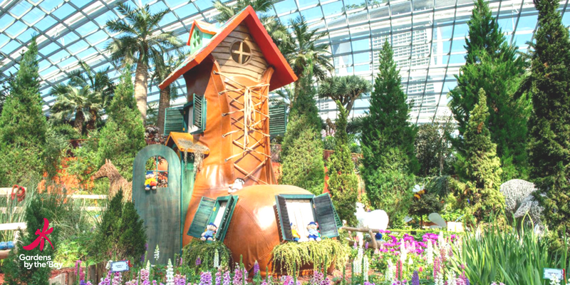 singapore garden by the bay flower dome 800400 - Garden By The Bay Flower
