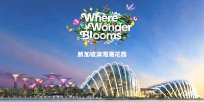 Singapore Garden by The Bay Wonder Blossom 800x400