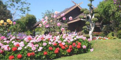 Thailand Chiangrai Doi Tung Royal Palace and Garden