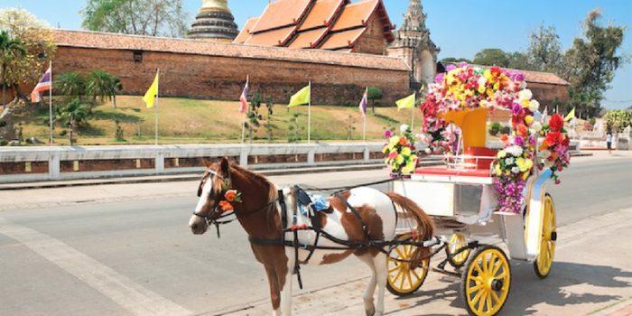 Thailand Lampang Horse Carraige