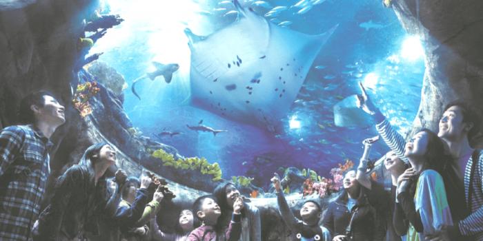 Hong Kong Ocean Park 2nd Adult Half Price till 30Nov2017 800×400