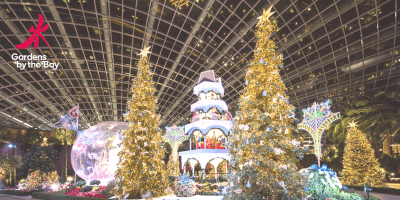 Singapore Gardens by The Bay Christmas 800x400
