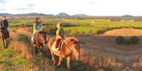 Korea Jeju Island Horse Back Riding Experience 800×400