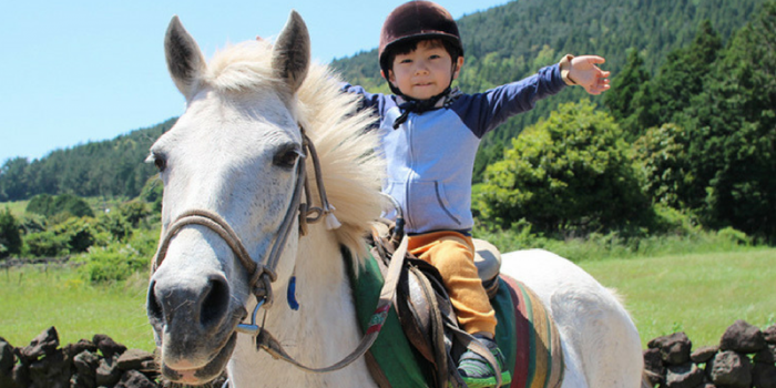 Korea Jeju Island Horse Back Riding Kids Fun 800×400