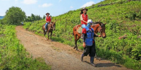Korea Jeju Island Horse Back Riding Short Course 800×400