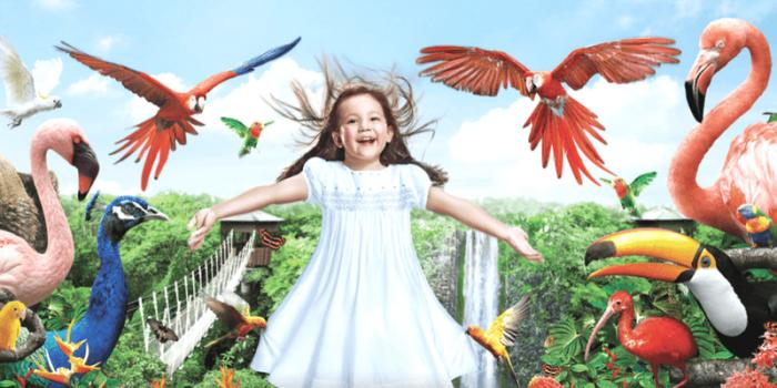 Singapore Happy Go Family Fun Jurong Bird Park 800×400