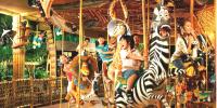 Singapore Universal Studios Family Fun Carolsell 800×400