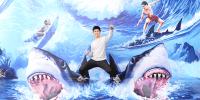 Korea Busan 3D Trick Eye Museum Shark Riders 800×400