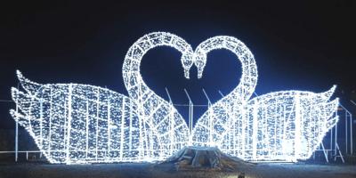 Korea Jeju Island Light Garden and Photo Studio Love Swan 800x400