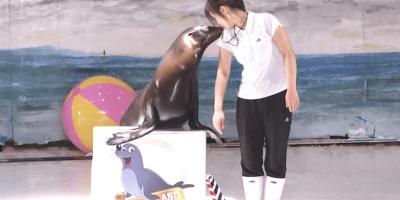 Korea Jeju Island Pacific Land Show Kisses 800x400