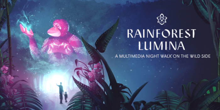 Singapore Rainforest Lumina 800×400