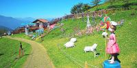 Taiwan Cinjing Farm Visit 800×400
