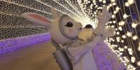 Korea Icheon Ooozoo Starlight Garden Galaxy Tunnel 800×400