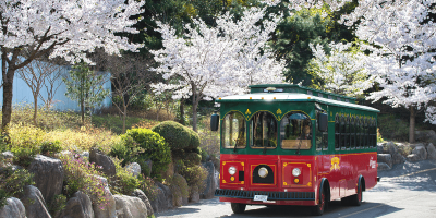 Korea Seoul City Tour Bus Trolley Bus 800x400